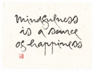 mindfulness source de joie