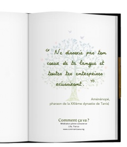 alignement-coherence-manager-mbsr-lille-meditation-citation-amenopee